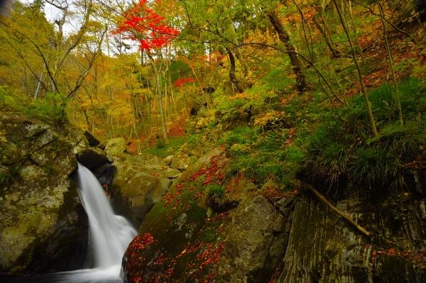 『花園渓谷』の画像