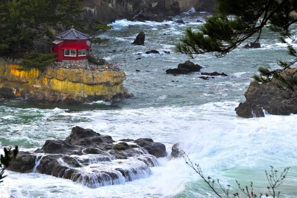 『五浦海岸』の画像